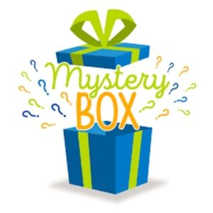 Reseller Mystery Box Children's Mixed Lot Clothing
